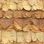 Roof leaf — Stock Photo #13381874