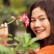 Stock Photo: Asiwomand flower