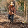 Farmer making compost — Stock Photo