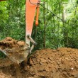 Earth mover in forest — Stock Photo #13382923