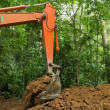 Earth mover in tropical rainforest — Stock Photo #13382929