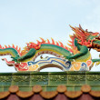 Dragon ornament — Stock Photo #13383830
