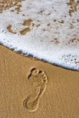 Dying footprint — Stock Photo