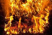 Pine needle fire — Stock Photo