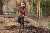 Farmer making compost — Stock Photo