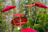 Guarda-chuva asiática — Foto Stock