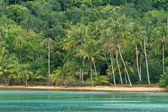 Spiaggia tropicale asiatica — Foto Stock