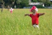 Scarecrow in rice field — Stock Photo