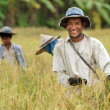 Happy thai farmer - Photo