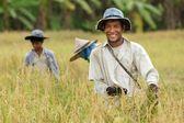 Felice contadino thailandese — Foto Stock