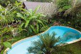 Pool in garden — Stock Photo