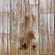 Rotten bamboo background — Stock Photo