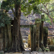Preah Pithu temple — Stock Photo