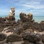 Rocky tropical coastline — Stock Photo