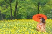 Beautiful woman holding a parasol in a meadow — Stock Photo