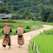 Hilltribe women near paddy fields walking up to their village in Sapa — Stock Photo #38862591