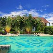 Foto de Stock  : Luxury blue swimming pool in tropical garden