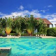 Stock Photo: Luxury blue swimming pool in tropical garden