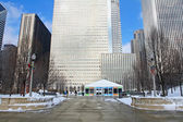 Millenium park at winter in chicago — Stock Photo