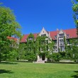 Ivy clad halls at University of Chicago — Stock Photo #39101553