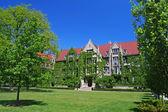 Ivy clad halls at University of Chicago — Stock Photo