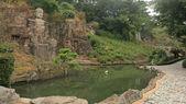 Chinese Buddha stone statue near pond — Stock fotografie