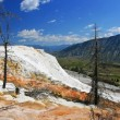 Mammoth Hot Spring at Yellowstone National Park — Stock Photo