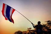 Protestor raises Thai flag at twilight — Stock Photo