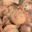 Stock Photo: Dry  coconut shells at market place