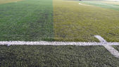 足球场条纹草 — 图库照片