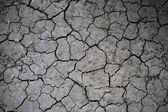 Cracked earth textured background  — Stock Photo