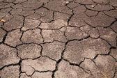 干燥裂纹的地球背景 — 图库照片