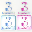 Blue and pink 100 percent guarantee icon — Stock Photo #21855089