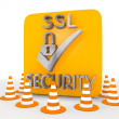 Stock Photo: 3d render of metallic SSL icon