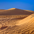 Sahara desert sand dines — Stock Photo