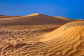 Sahara desert sand dines — Stock Photo