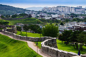 View from the Hwaseong Fortress — Stock Photo