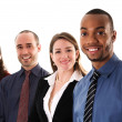 Business Team — Stock Photo #12420334