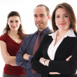 Business Team — Stock Photo #12420336
