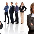 Business Team — Stock Photo #12423844