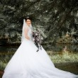 White Bride — Foto de Stock