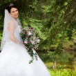 White Bride — Stock Photo