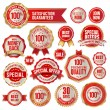 Set of business badges and stickers — Stock Vector