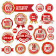 Stock Vector: Set of business badges and stickers