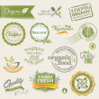 Organic food labels and elements — Image vectorielle