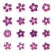 Stock Vector: Set of flower icons