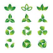 зеленые листья икона set — Cтоковый вектор