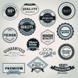 Stock Vector: Set of vector labels and badges