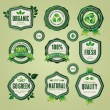 Set of organic and natural badges and labels — Stock Vector
