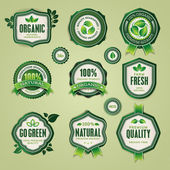 Set of organic and natural badges and labels — Stok Vektör